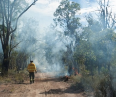 Prescribed burning in Perth hills