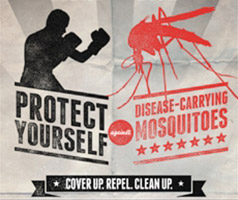 Fight the bite graphic: Protect yourself against disease-carrying mosquitoes. Cover up. Repel. Clean up.