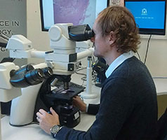 Health professional looking into a microscope